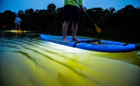 Paddle boarder at night