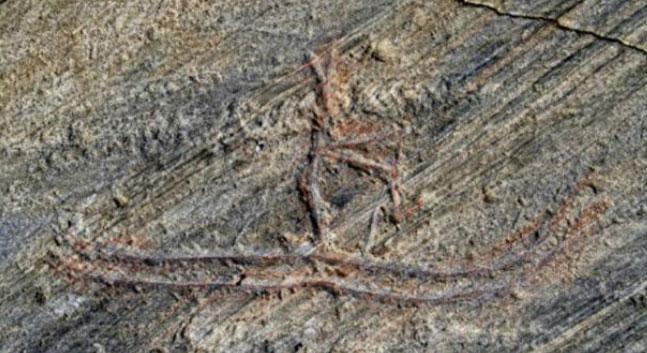 Surfer petroglyph, Australia