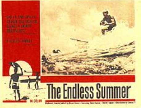 Cover for The Endless Summer